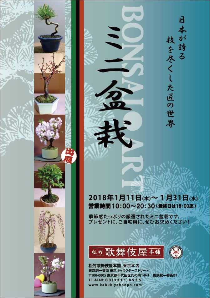 ミニ盆栽 BONSAI ART | DRY BONS...